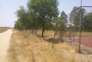 foto 37 junto al campo de futbito